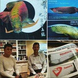 LEI-LiveExoticImports DreamFish Promotional Tour - Asian Arowana Feng Shui Dragons - 03.jpg