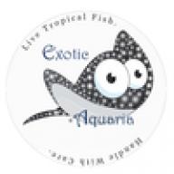 exoticaquaria